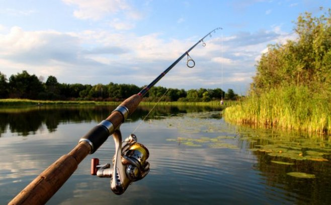 Рыбалка: нужно ли прятать кончик крючка в наживке