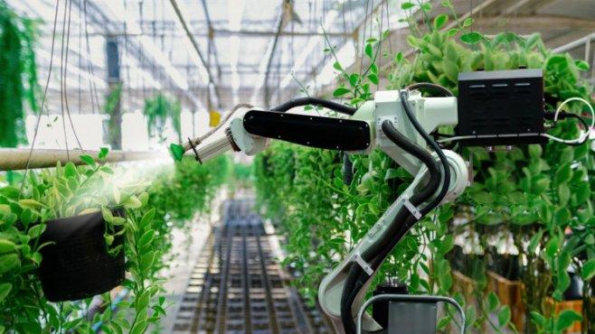 Фермы роботов вместо людей – это уже не фантастика, а реальность
