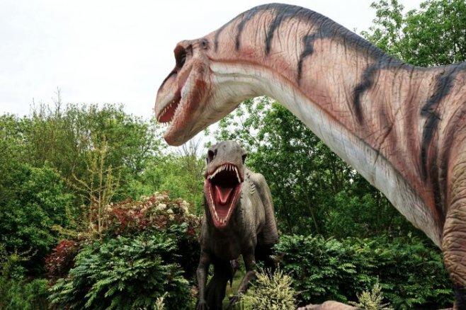 Сможем ли мы когда-нибудь вернуть динозавров к жизни?